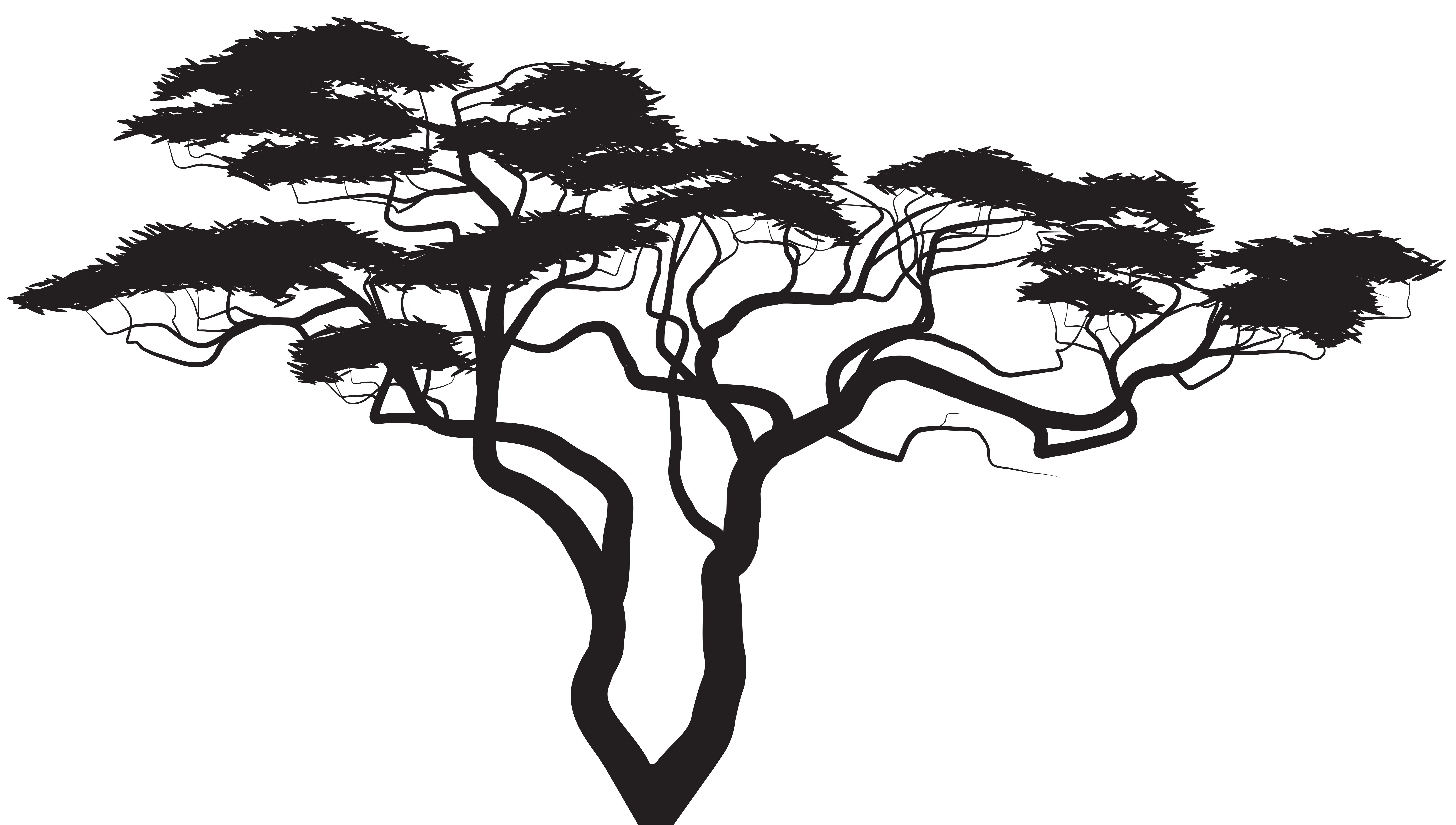 Library Of Tree Roots Image Freeuse Library Black And