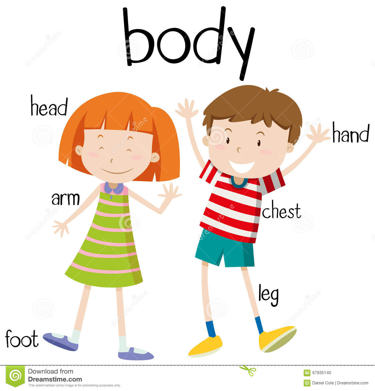 Library Of My Body Picture Transparent Download For Kids