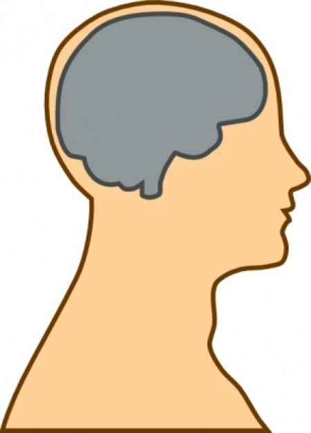 Image result for clipart brain