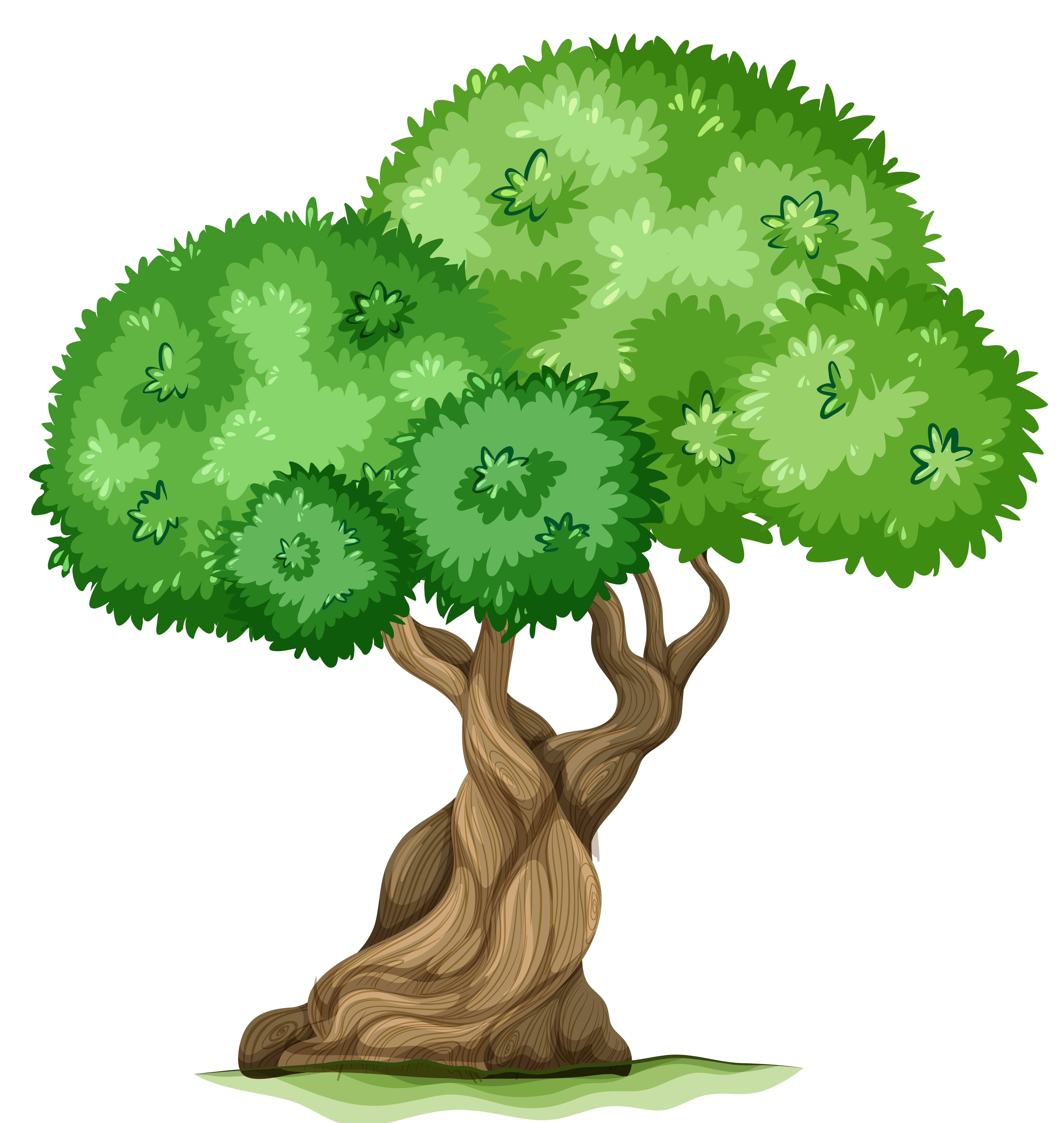 Cartoon Tree With Branches And Leaves