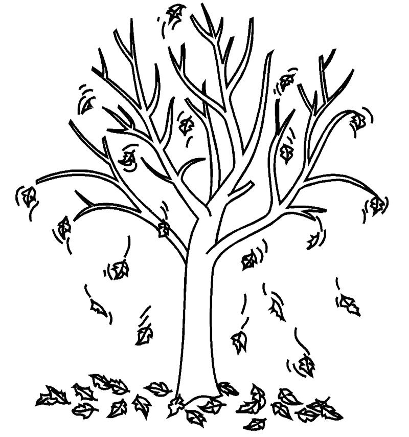bare tree outline coloring page coloring pages