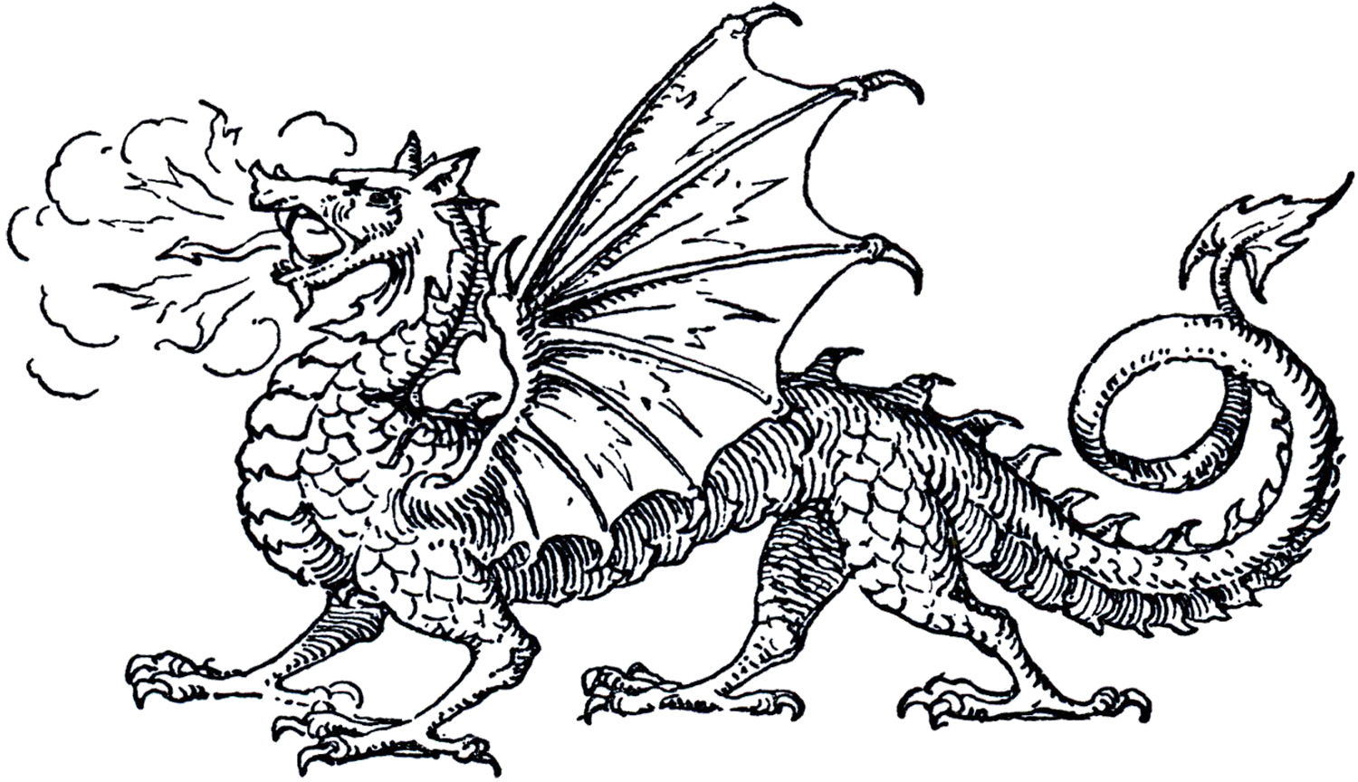 Best Dragon Clipart