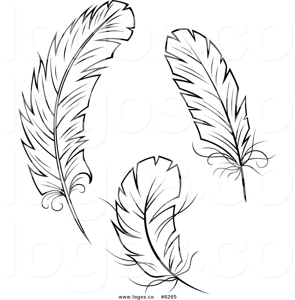 Peacock Feather Clipart Black And White Free