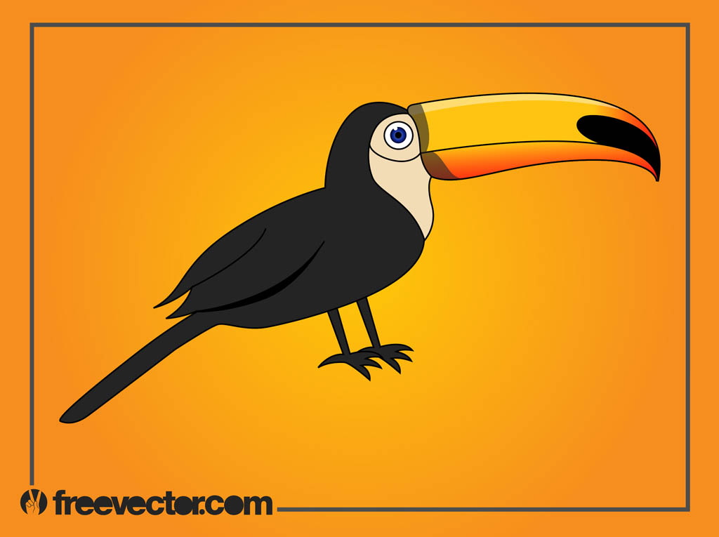 Free Cartoon Toucan Pictures Clipartix