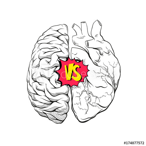 Download Creative Brain Drawing   Free download on ClipArtMag