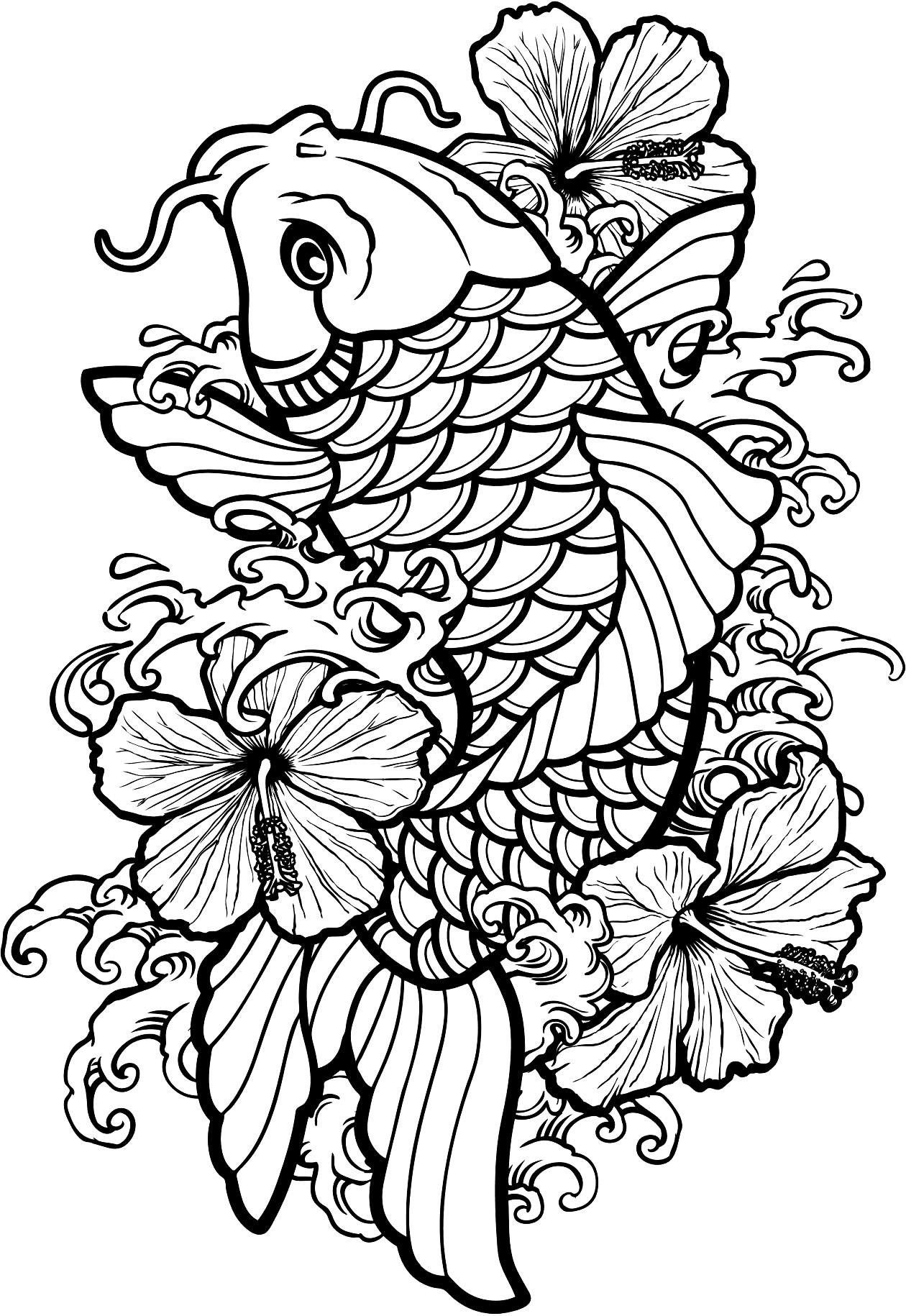 Koi Fish Outline Drawing