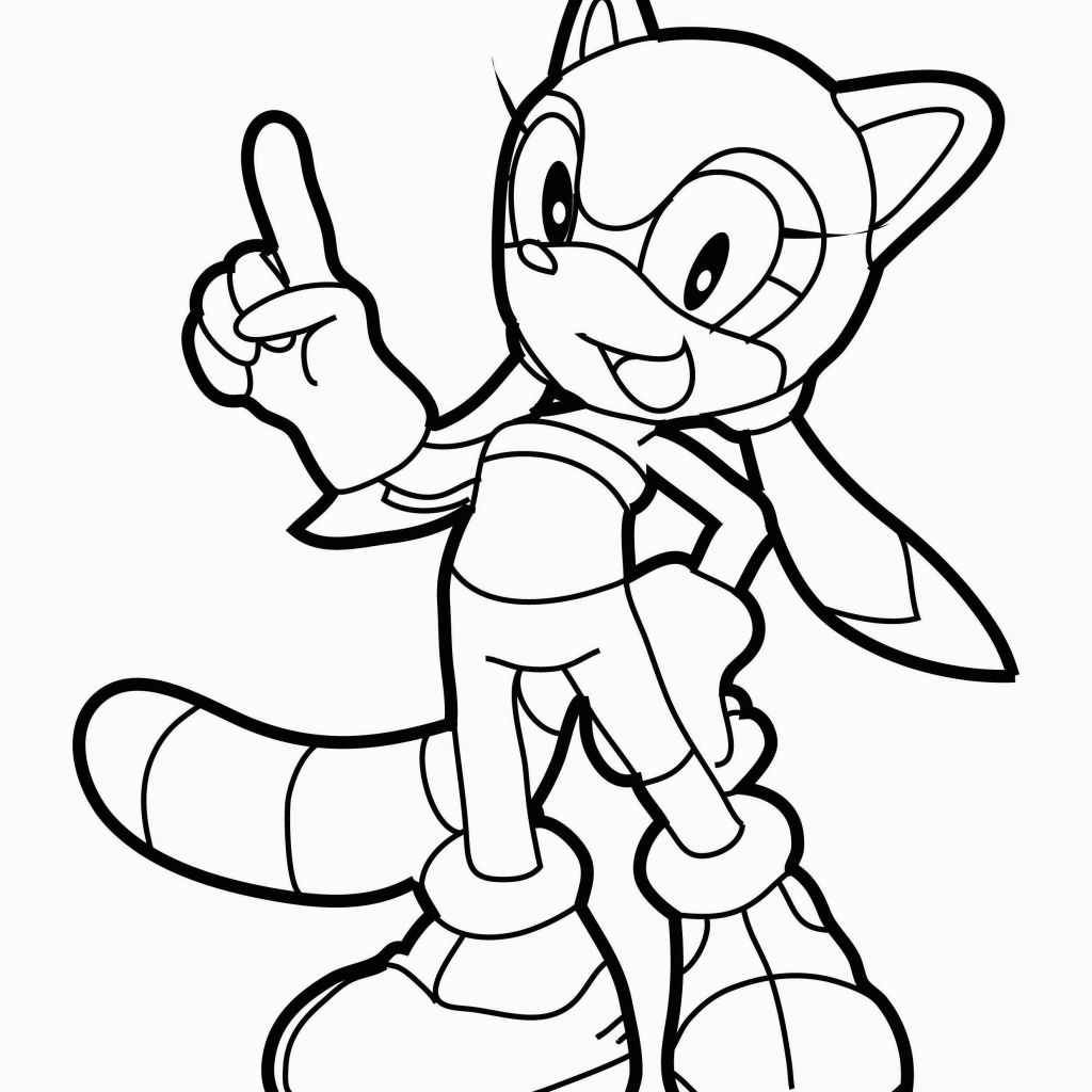 Sonic Drawing Book