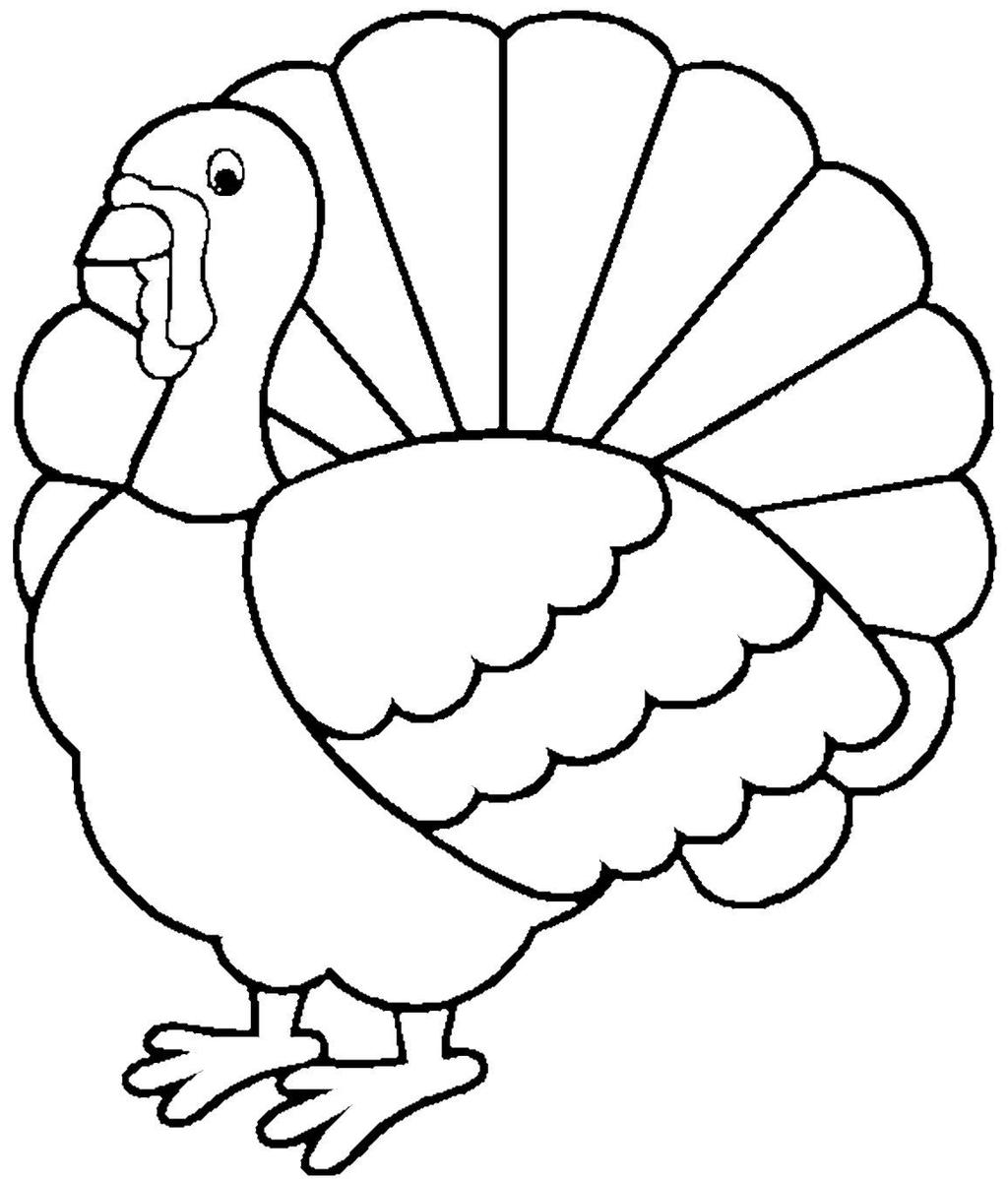 Turkey Drawing For Kids