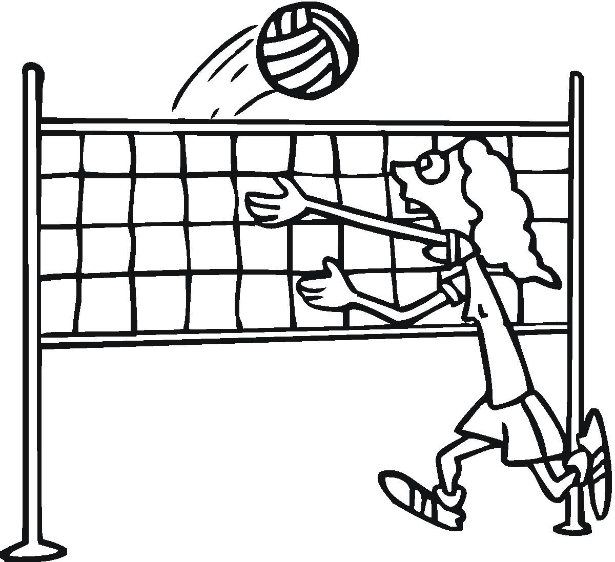Volleyball Court Drawing