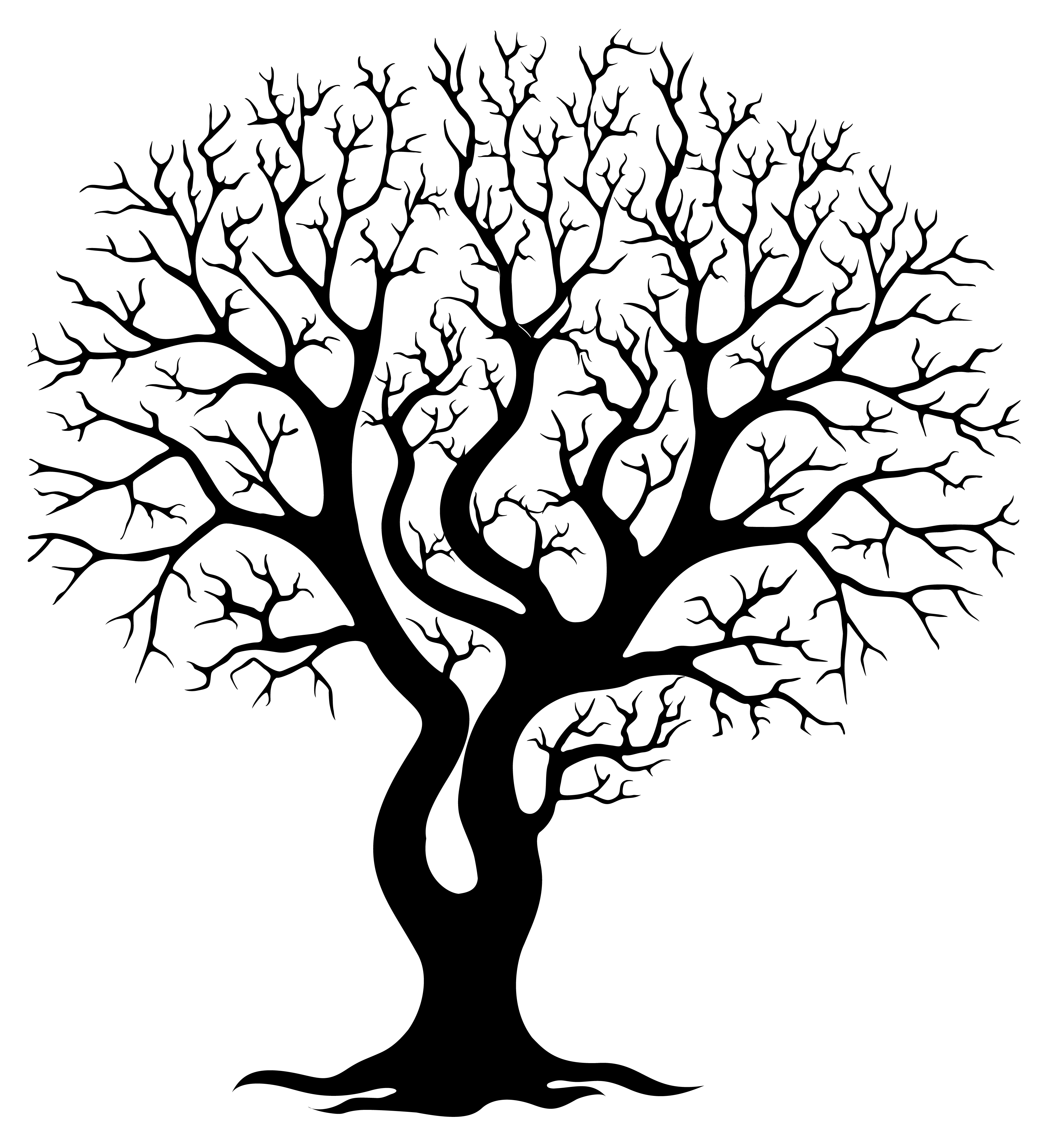 Bare Trees Clipart