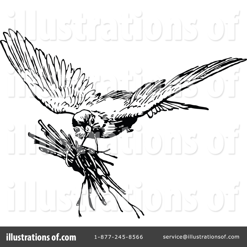 Bird Nest Clipart Black And White