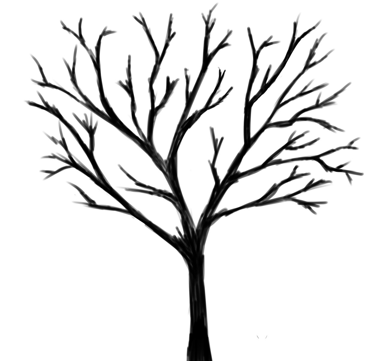 Black And White Tree Drawing