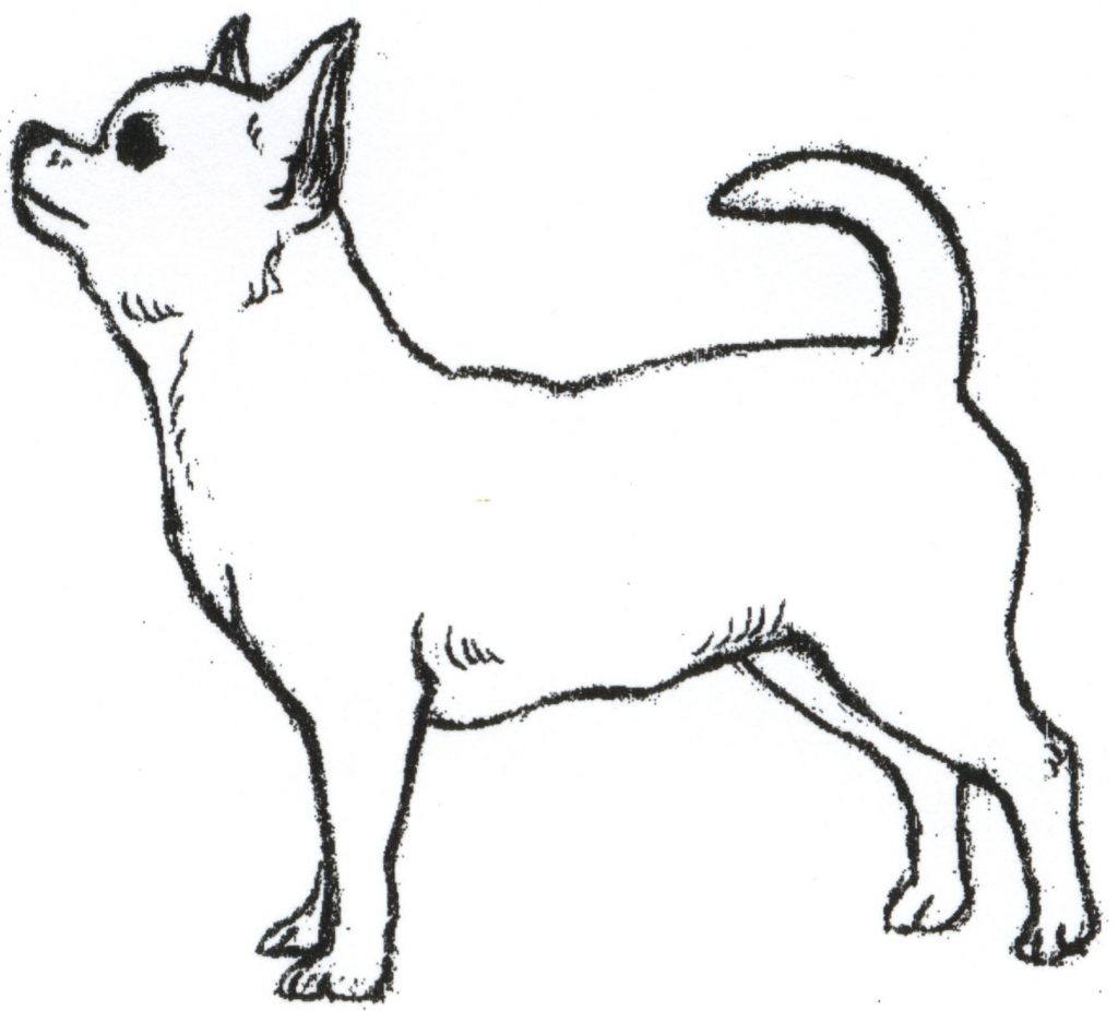 Dogs Drawings