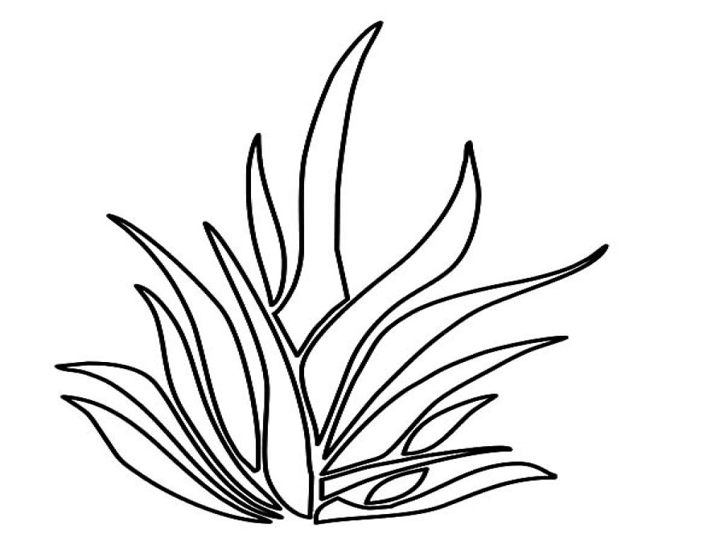 Grass Outlines