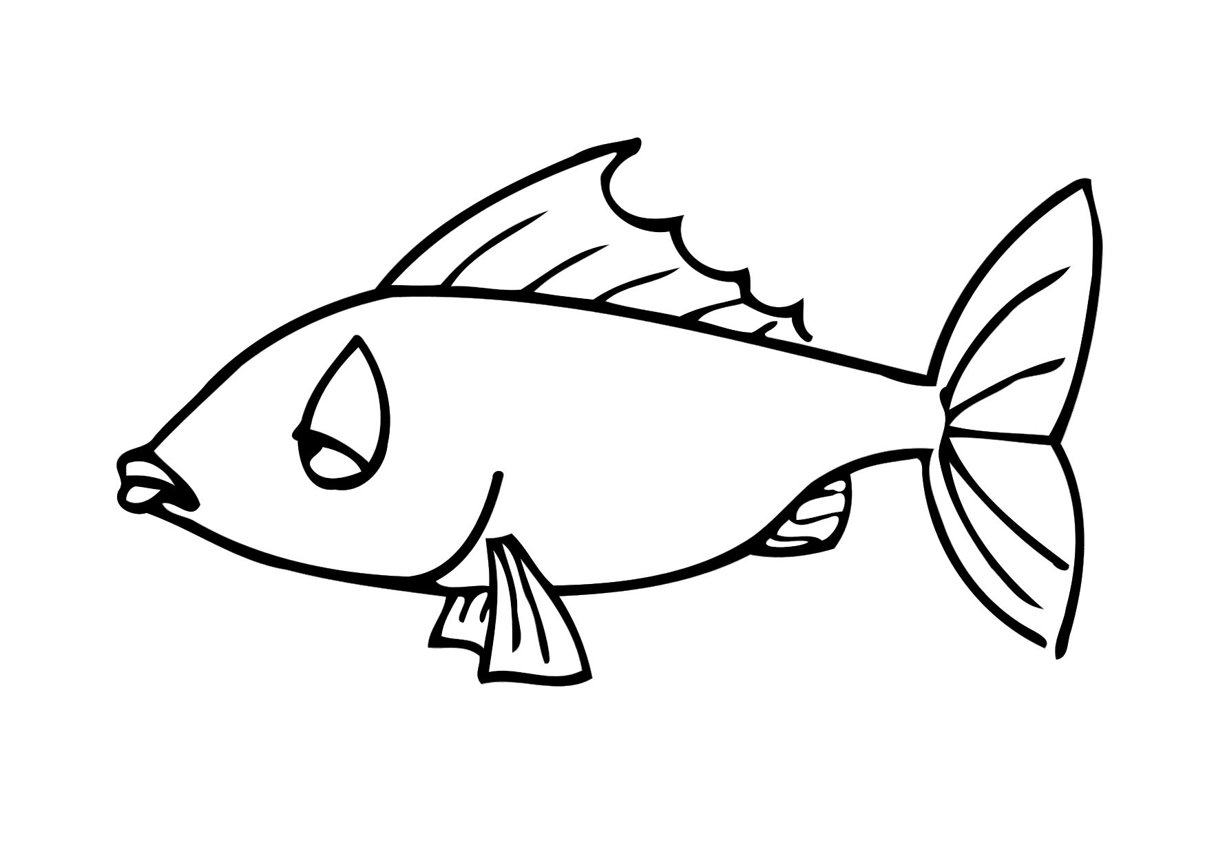 Koi Fish Coloring Page Clipart