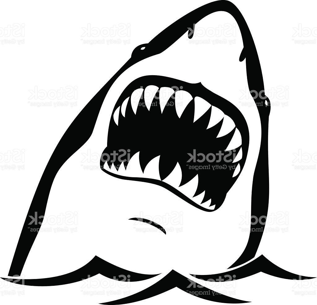 Shark Teeth Clipart