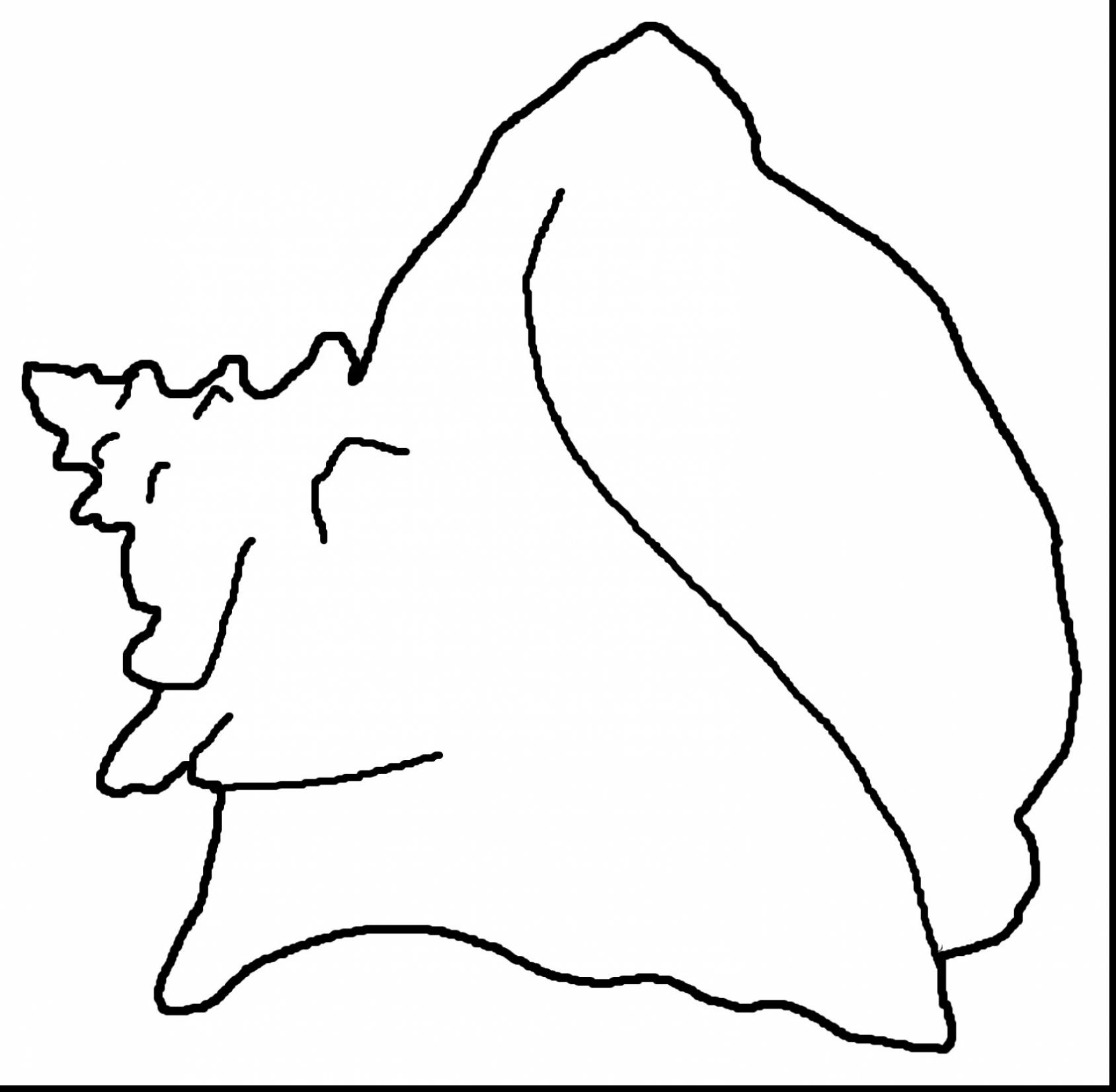 Shell Outline
