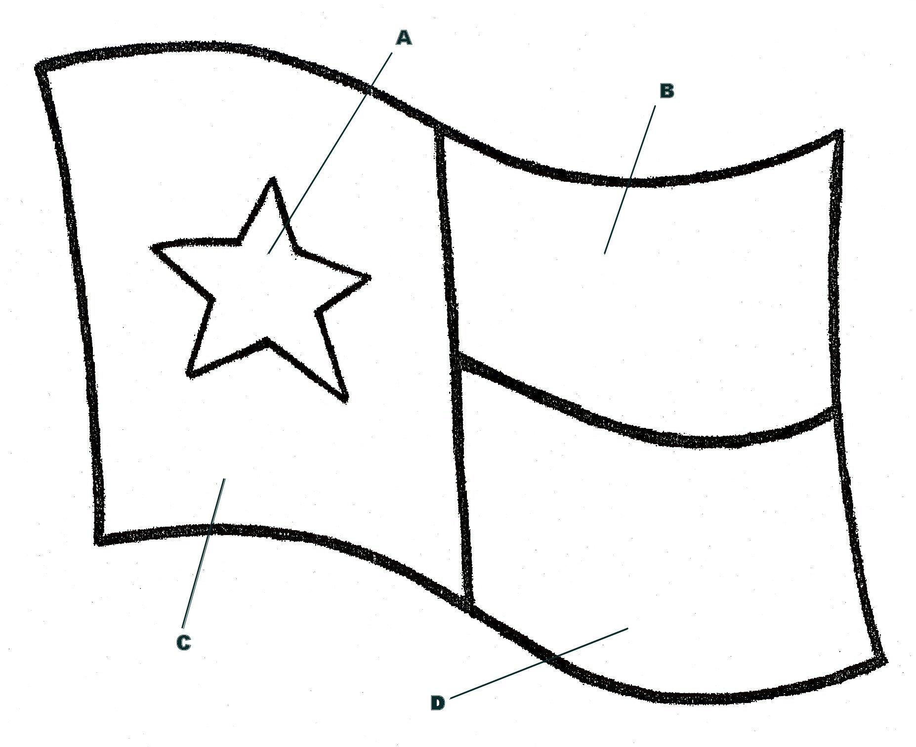 Texas Flag Pic