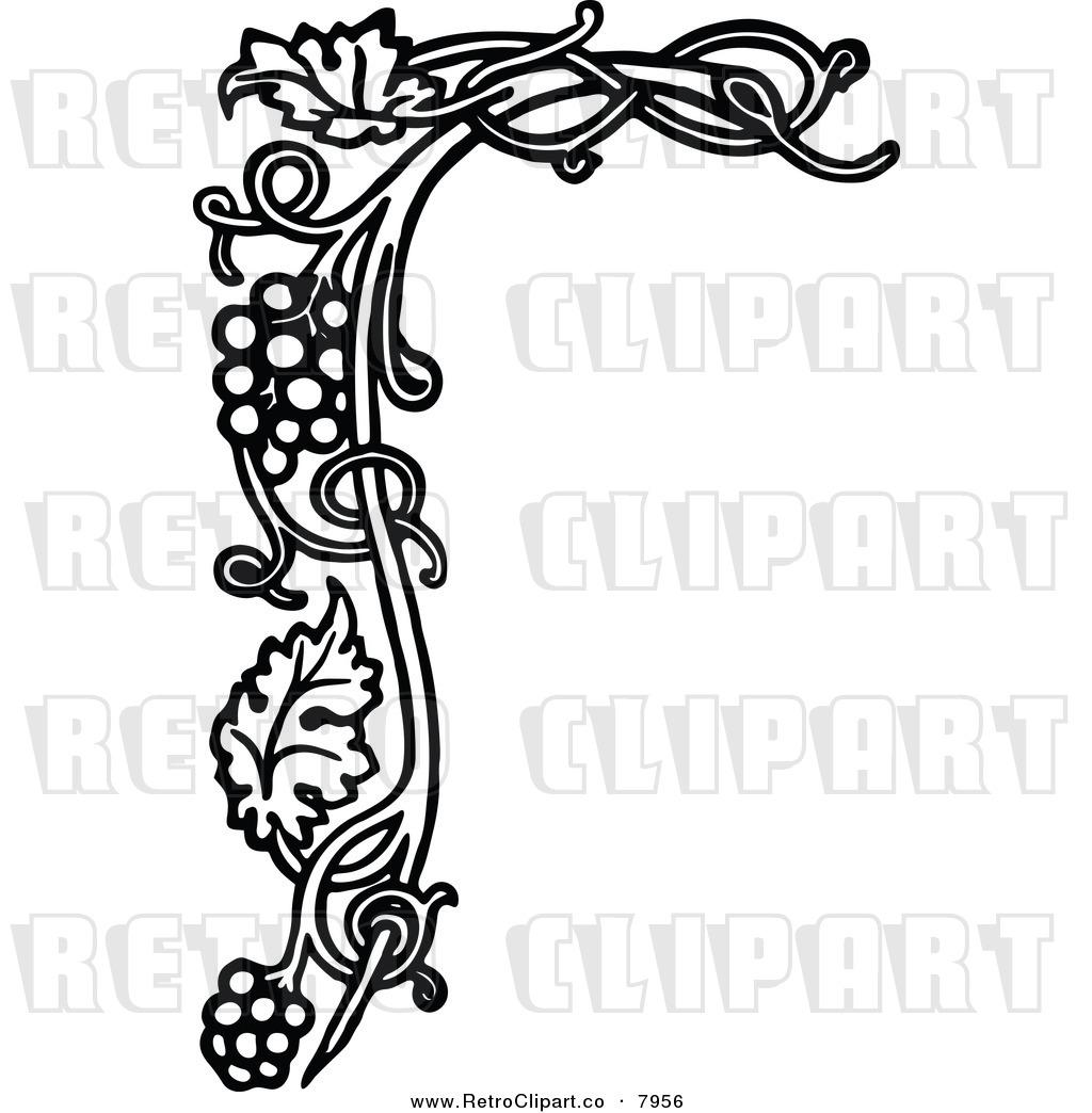 Vine Clipart Black And White