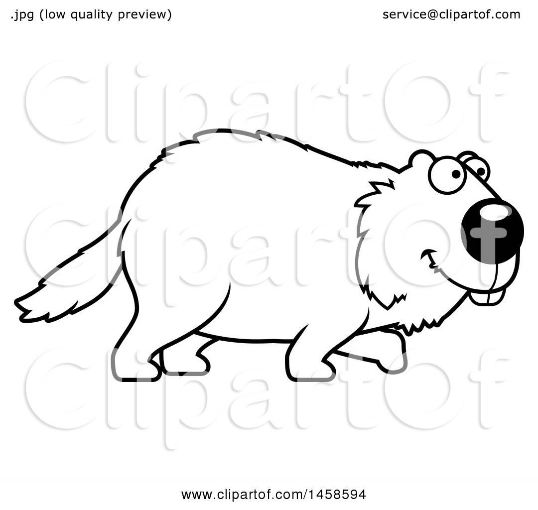 Woodchuck Clipart