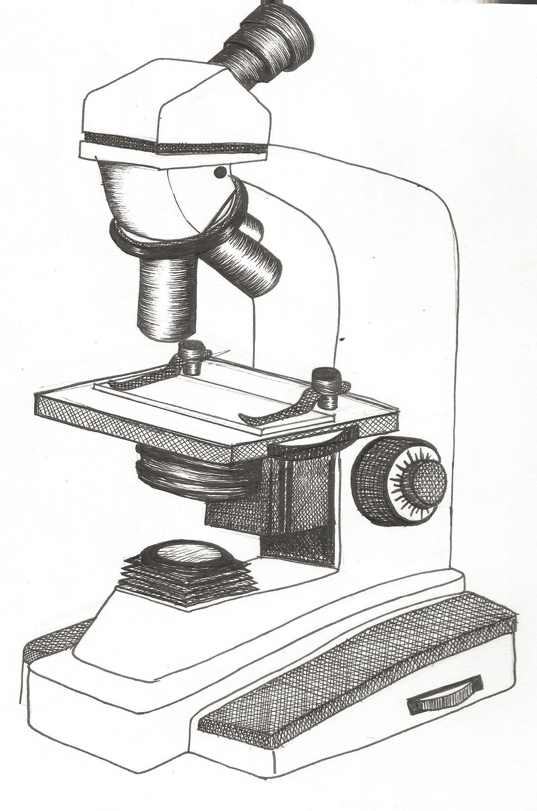 Microscope Drawing
