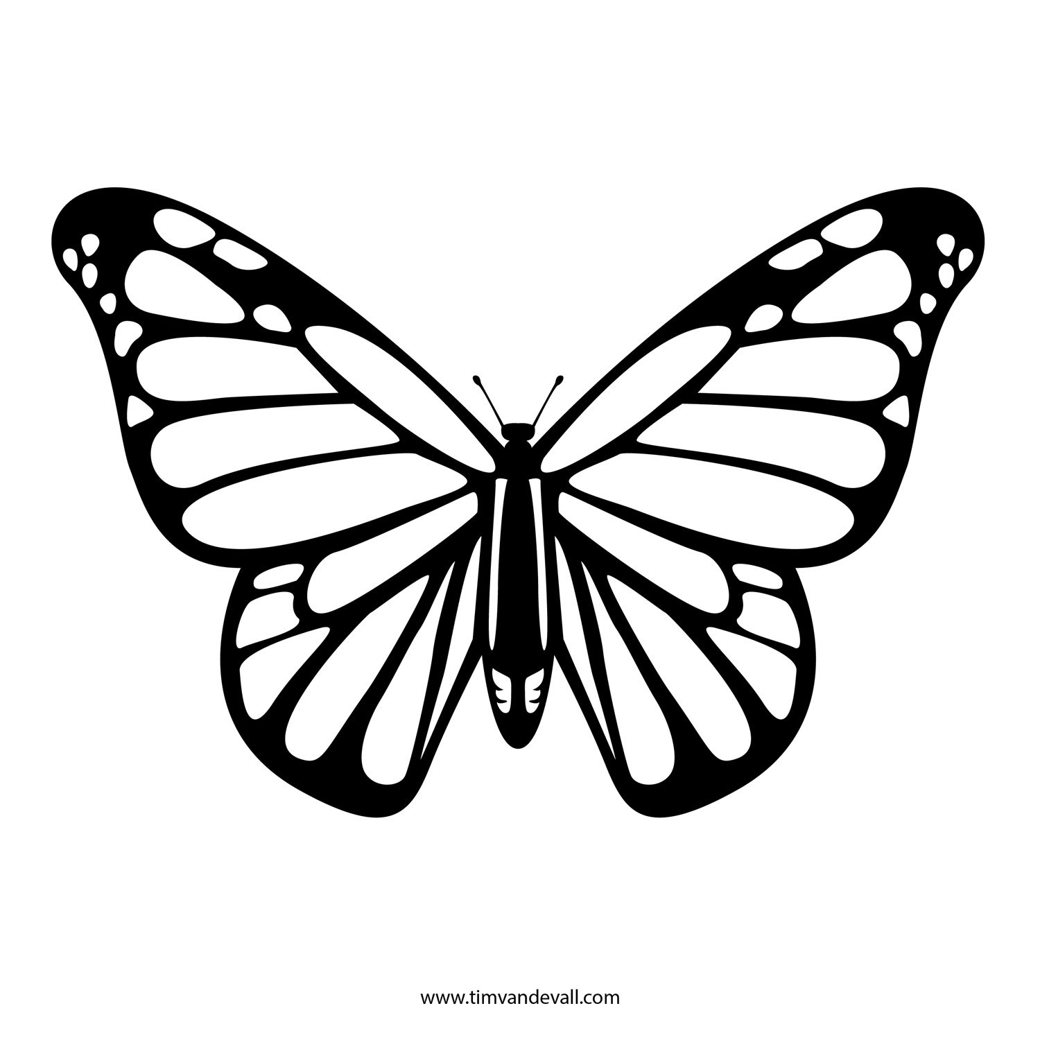 Butterflies Black And White Outline