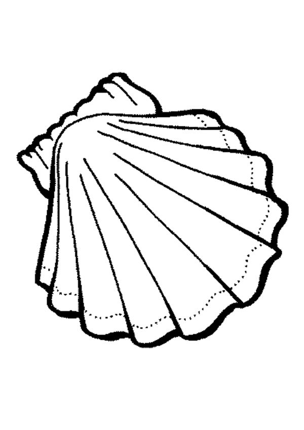 seaweed coloring pages  cliparts.co