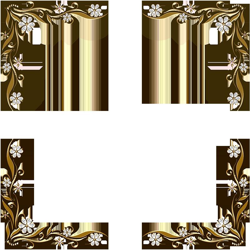 Elegant Gold Fancy Border