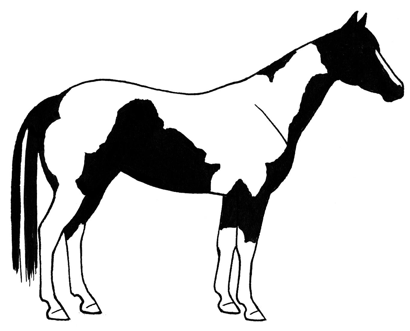 Horse Images Clip Art