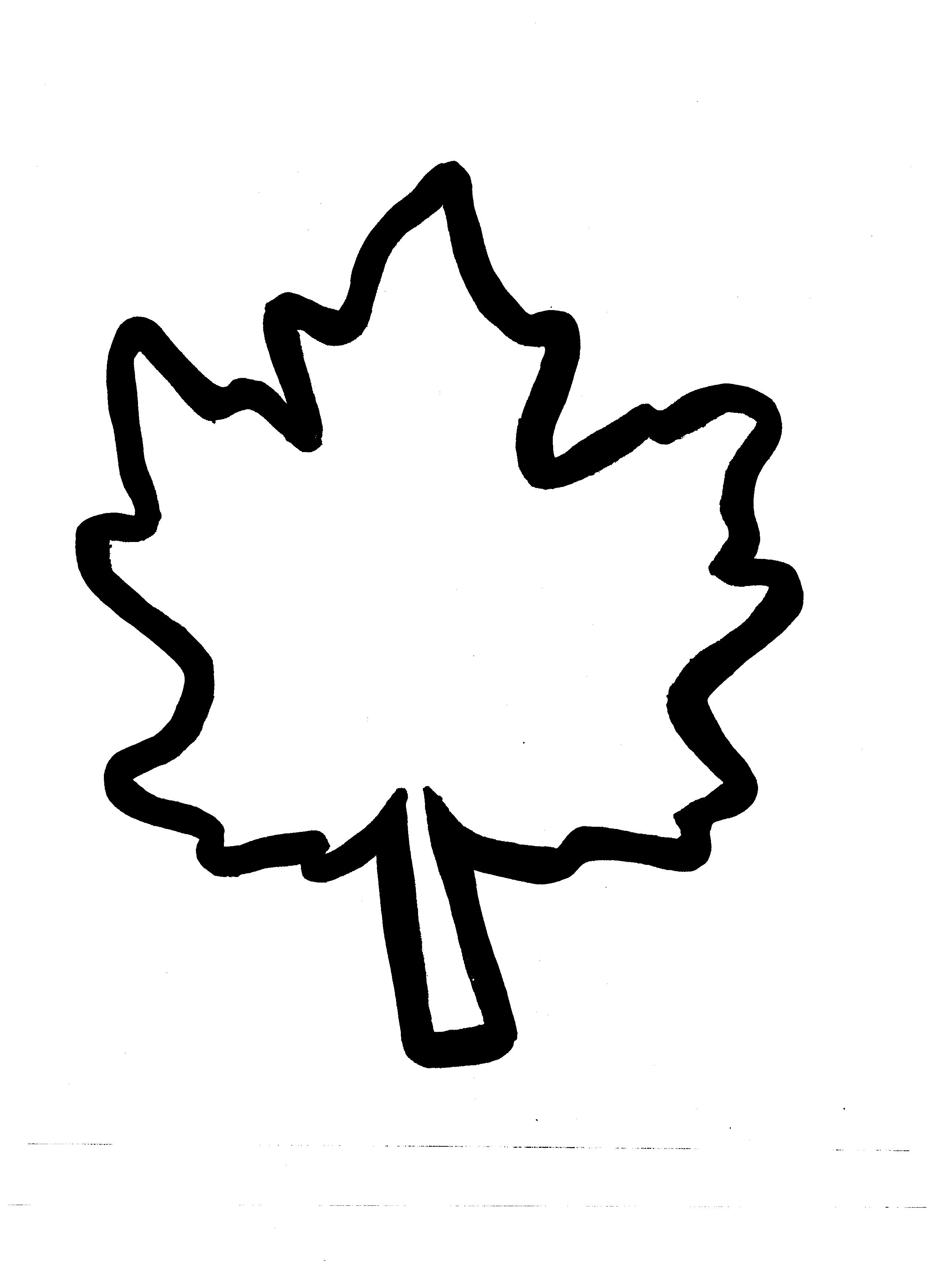 Autumn Leaf Outline