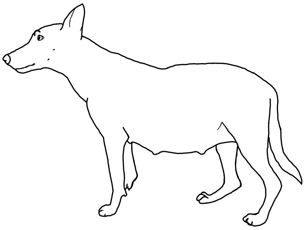 Line Drawing Of A Dog