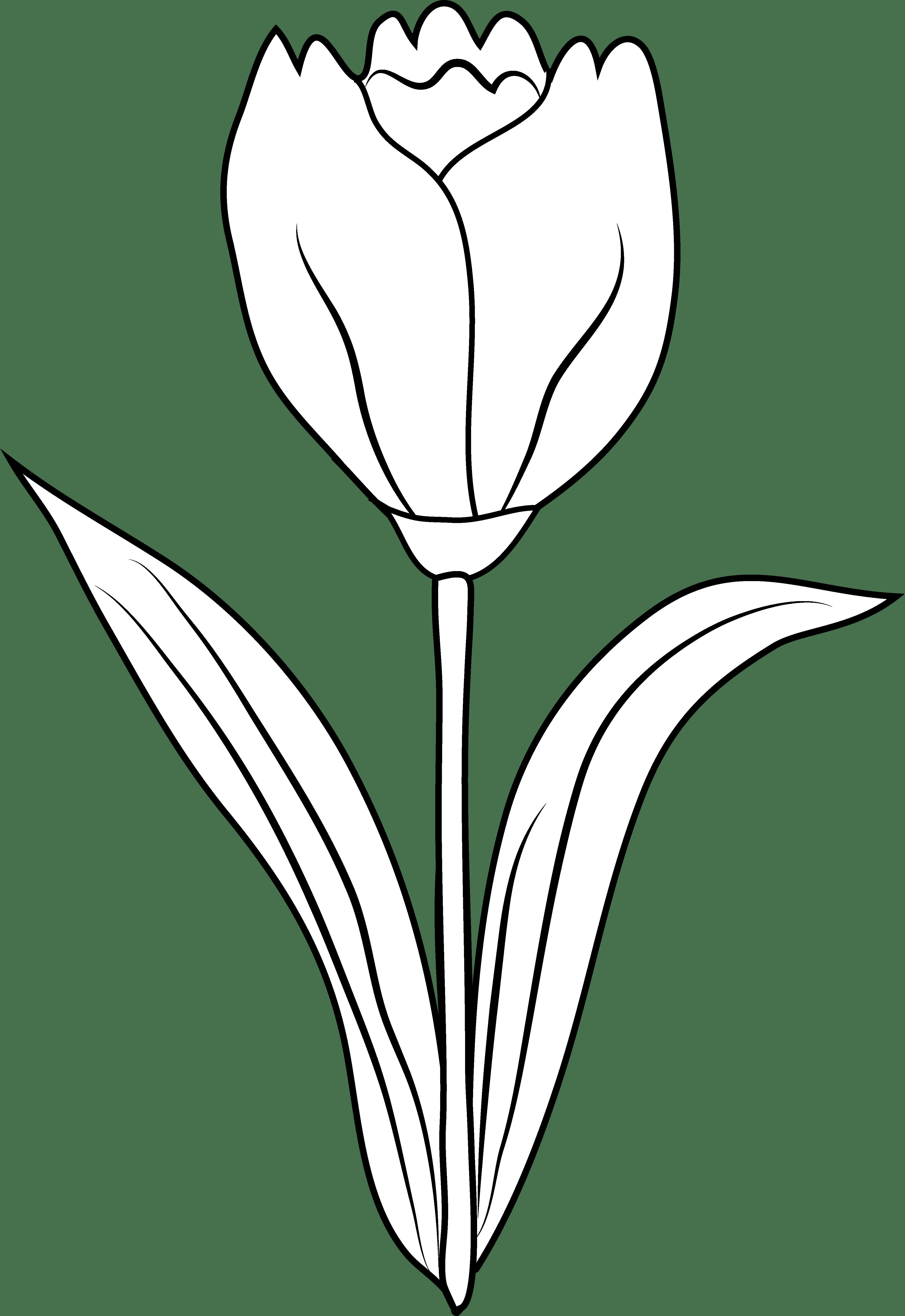 Clipart Flower Black And White