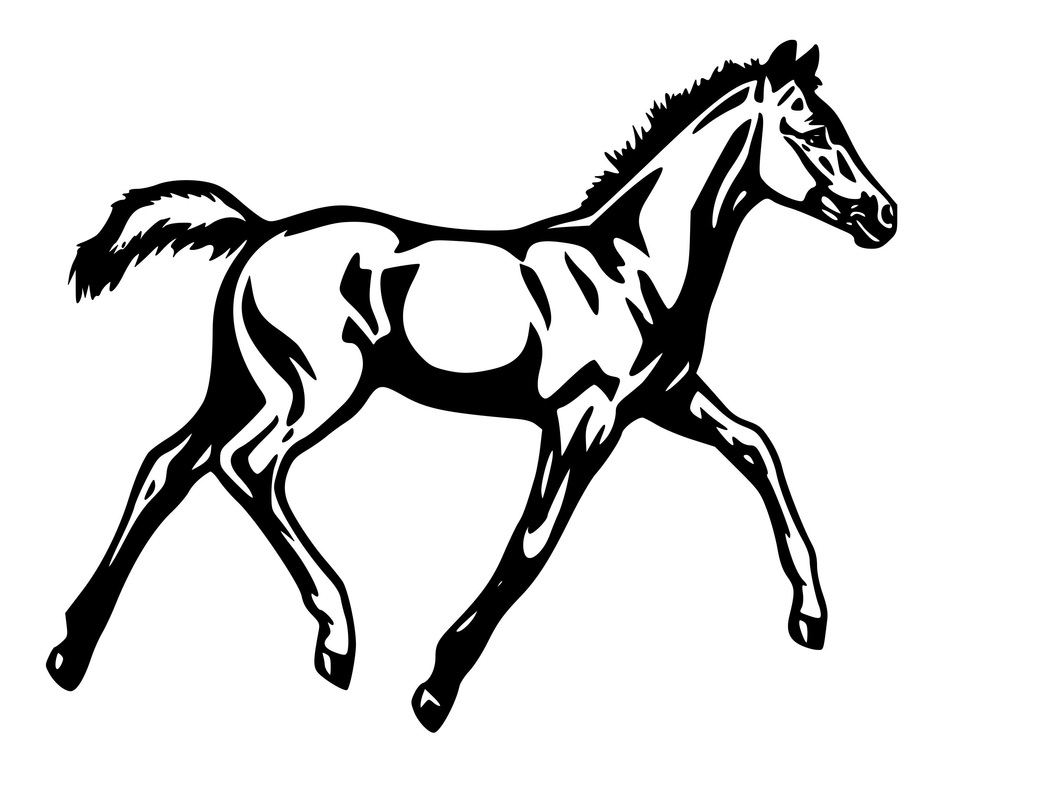 How To Draw A Mustang Horse
