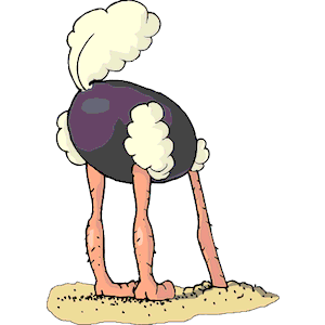 Ostrich Head Out of Sand