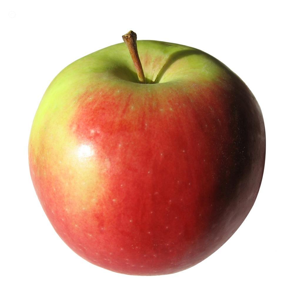 School Apple Clipart Image 871