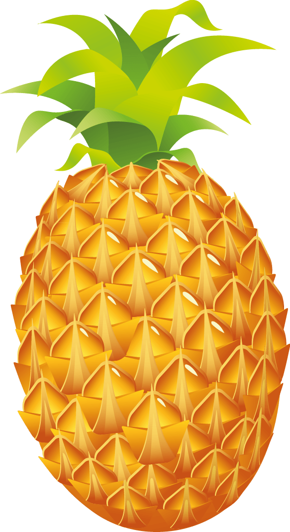 Pineapple Easy Drawing