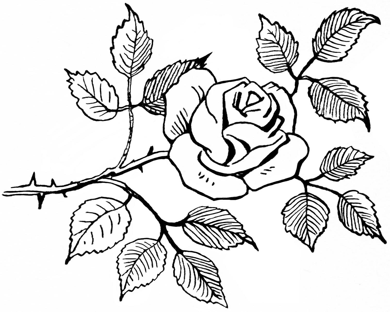 Flower Black And White Black Flowers Clip Art Danasojgf