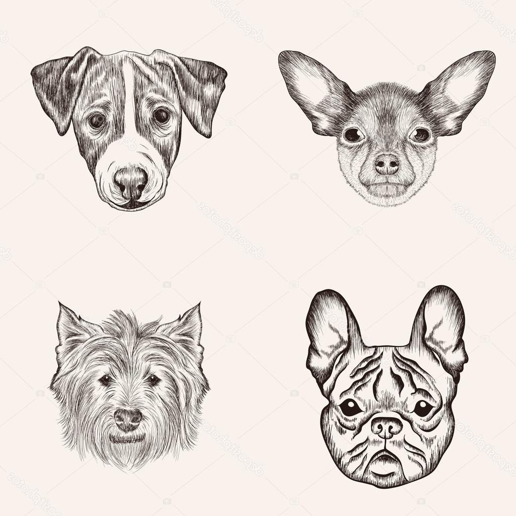 Clipart Dog Realistic Pictures On Cliparts Pub
