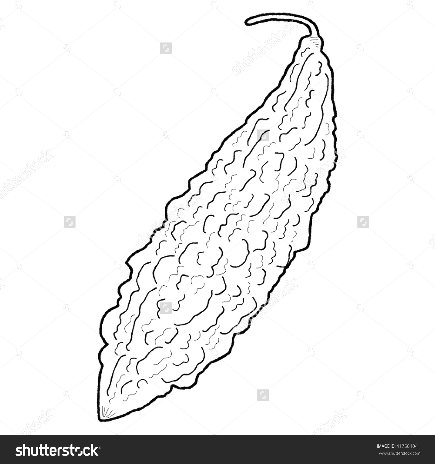 Ampalaya Clipart Black And White 10 Clipart Station