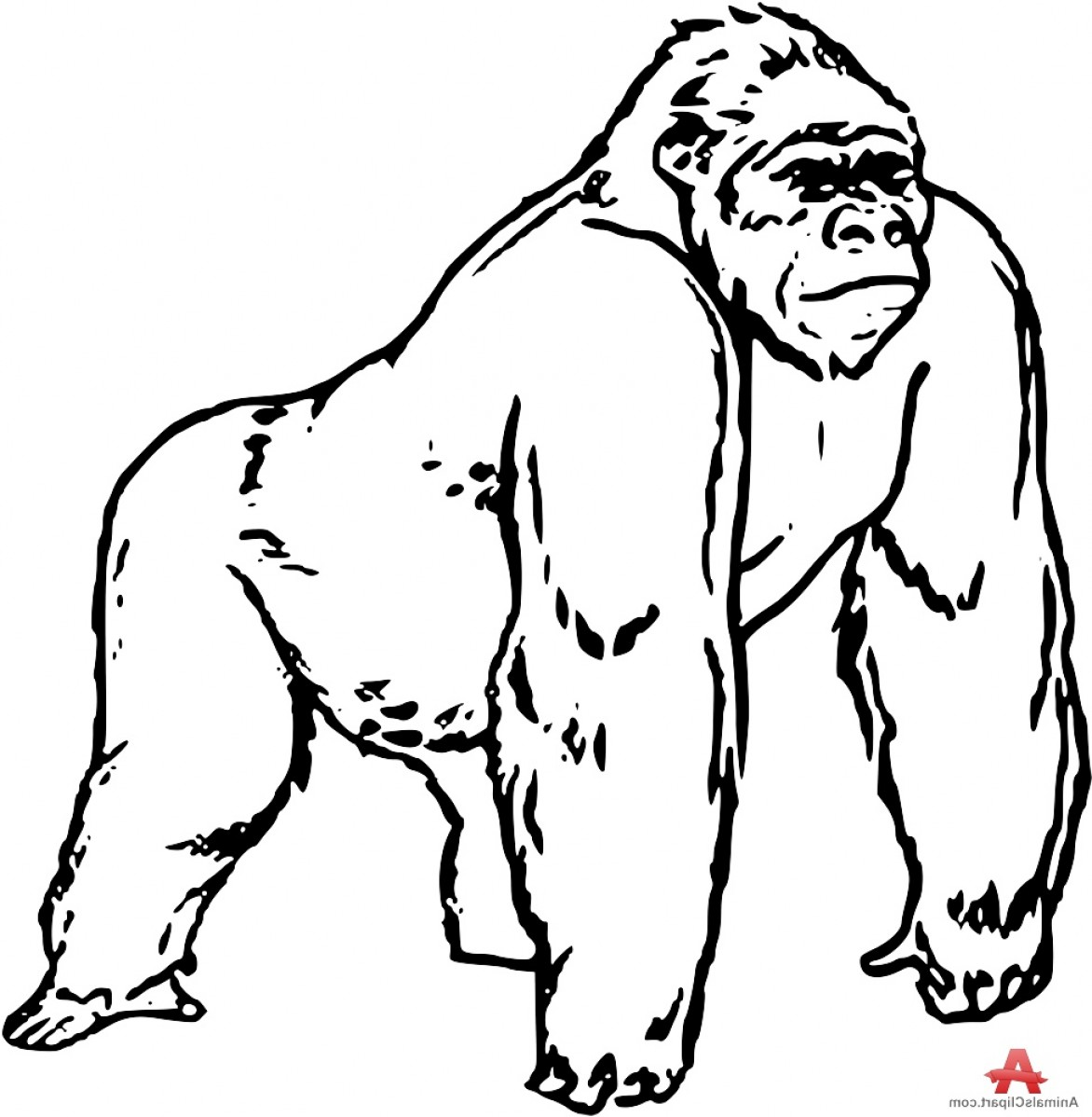 Gorilla Clipart Black And White 6 Clipart Station