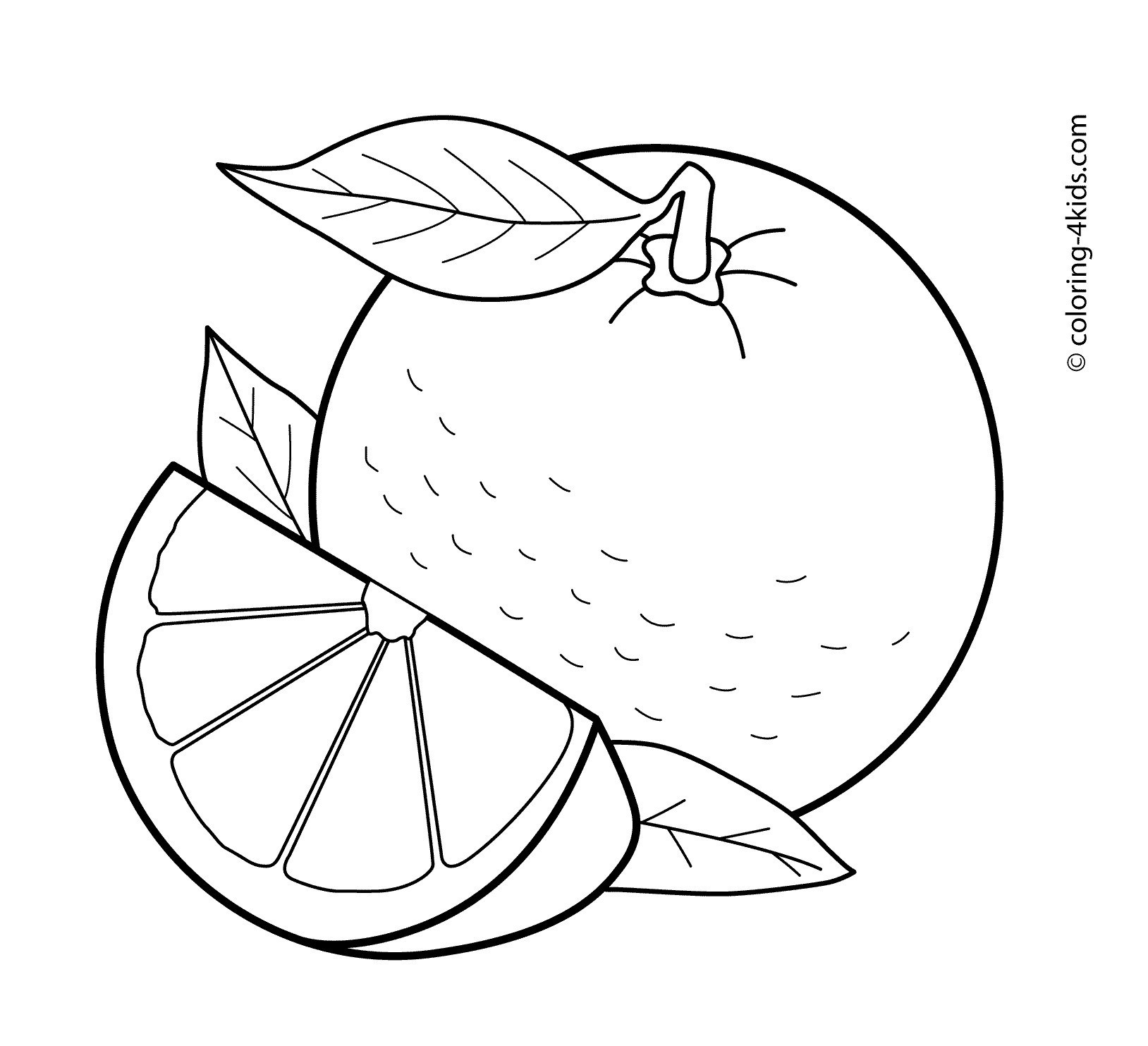 Orange Fruit Clipart Black And White 1 Clipart Station