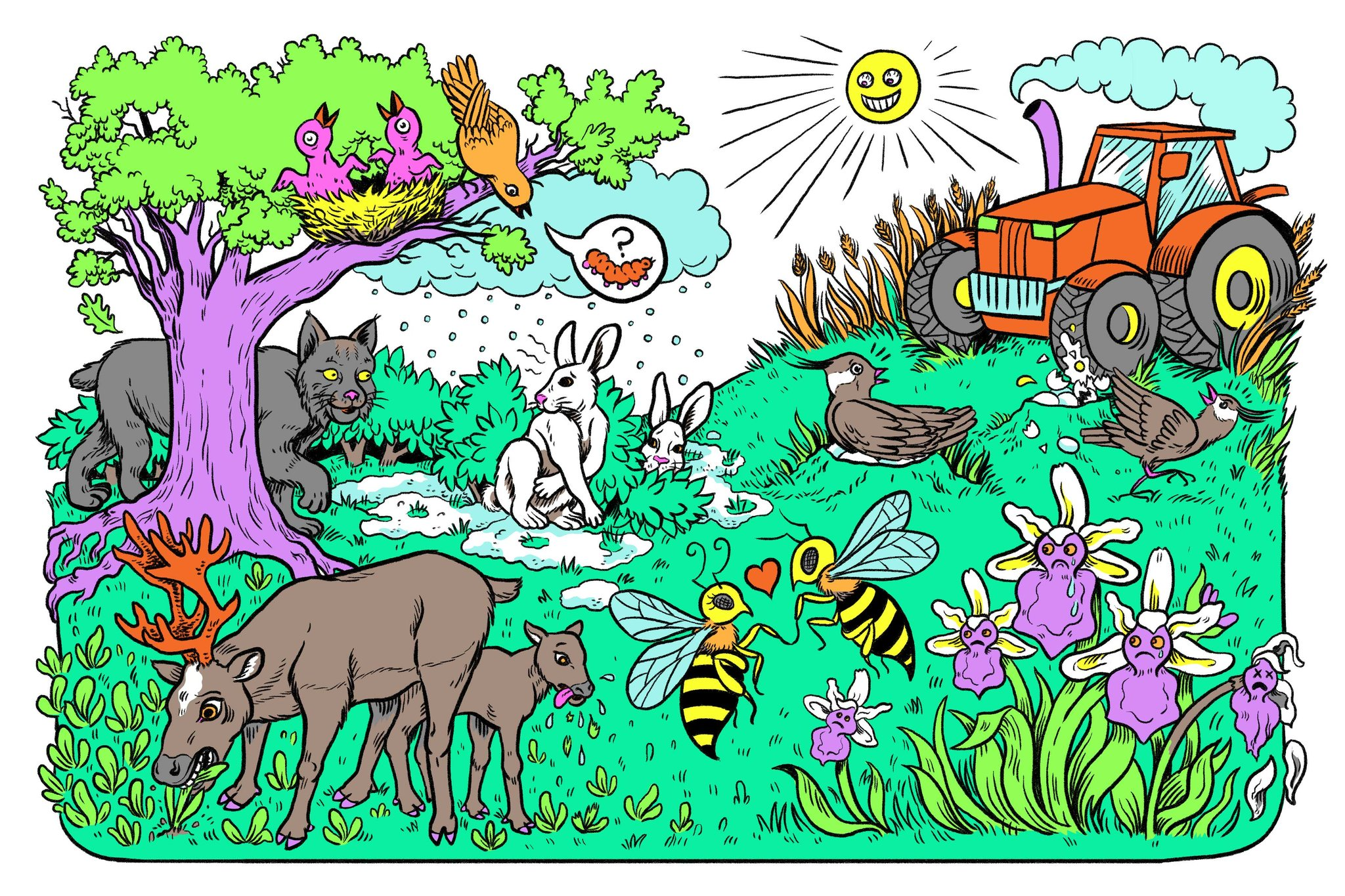 Aminals Gone Wild Wallpaper Clipart 10 Free Cliparts