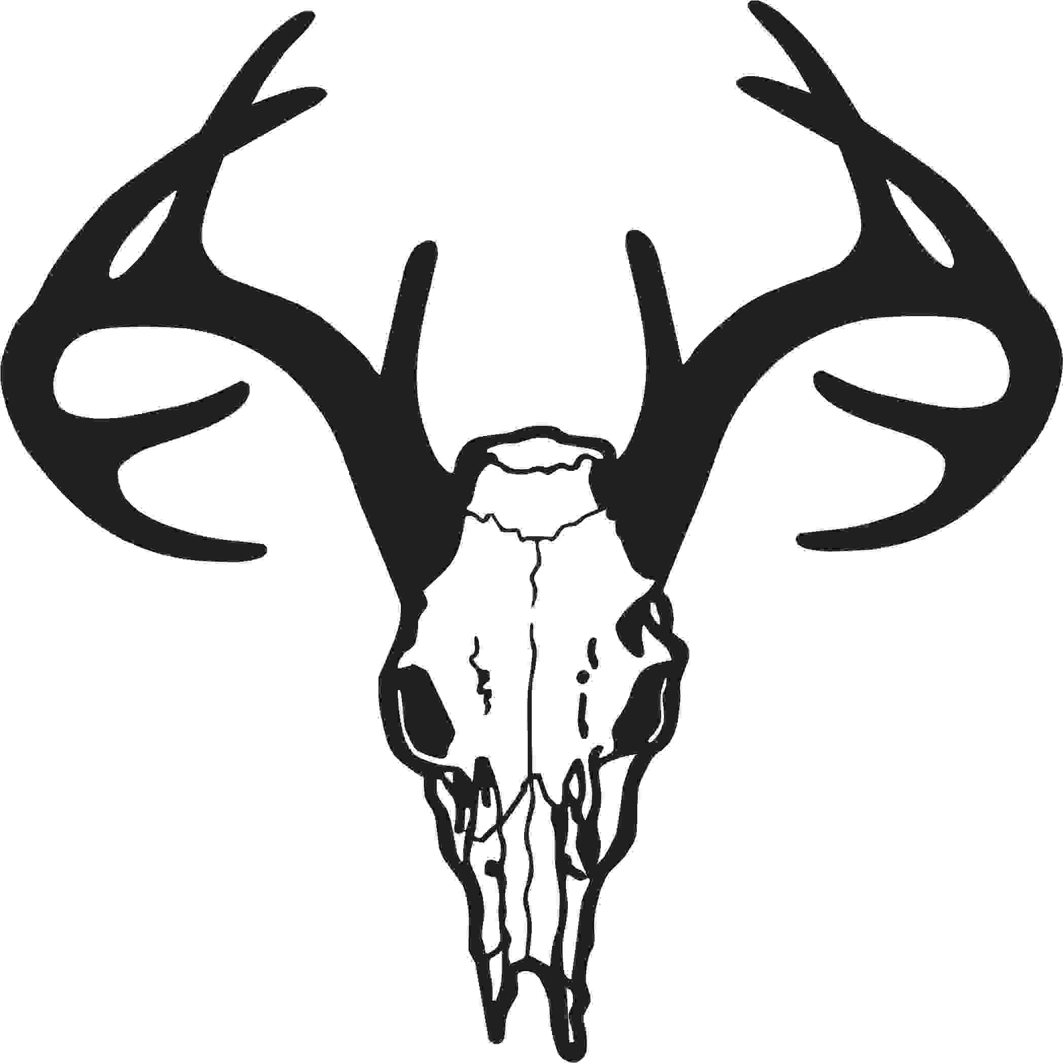 Animal Skull Clipart Clipground
