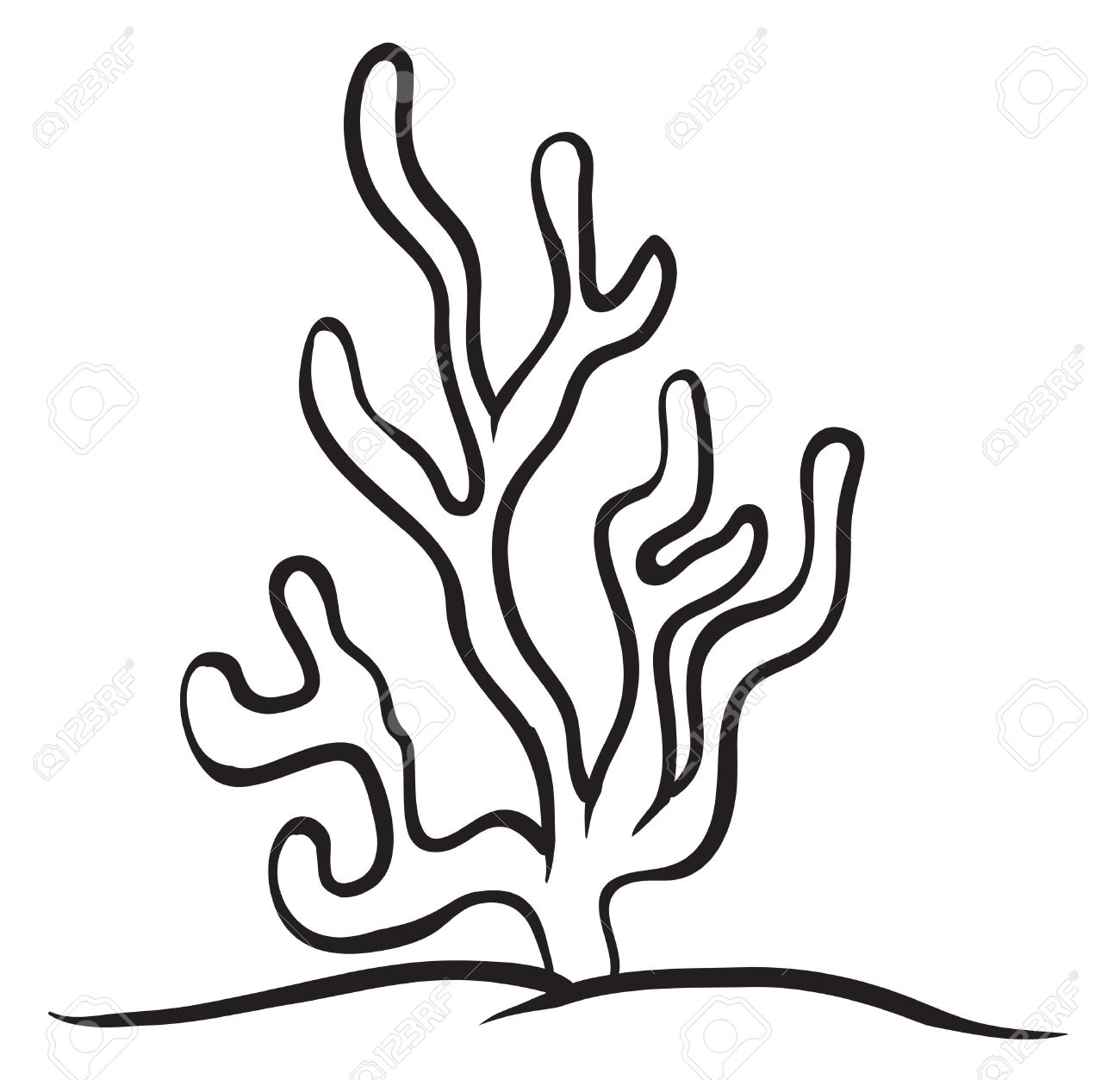 Aquatic Plants Clipart