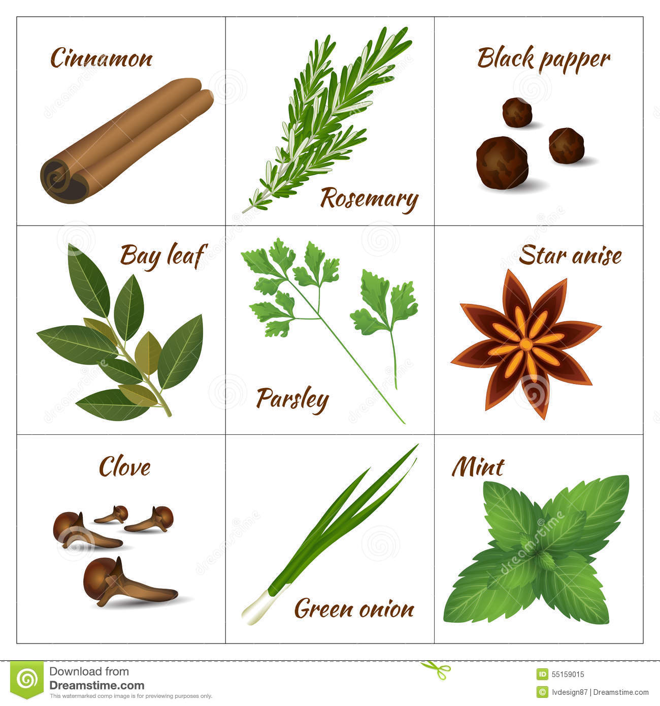 Aromatic Herbs Clipart
