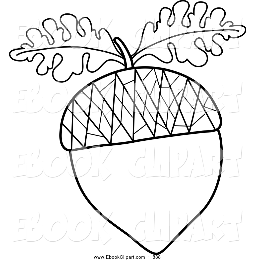 Black Acorns Clipart