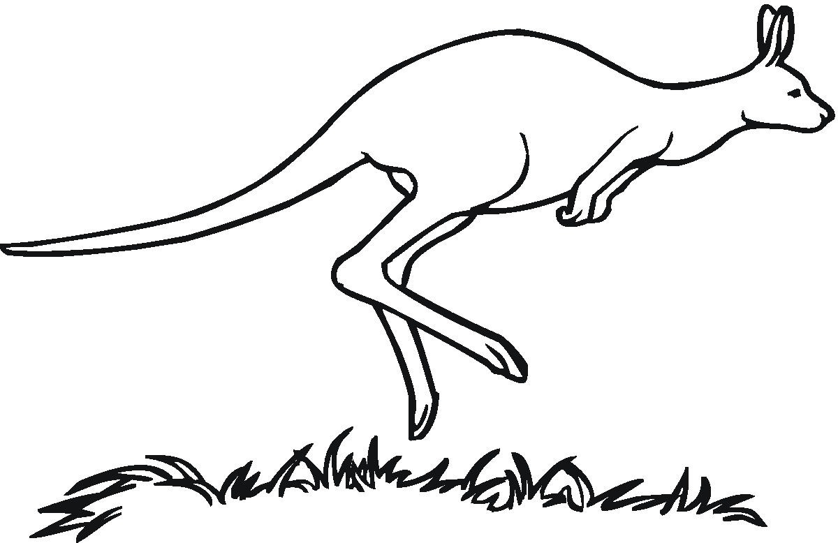 Clipart Black And White Kangaroo
