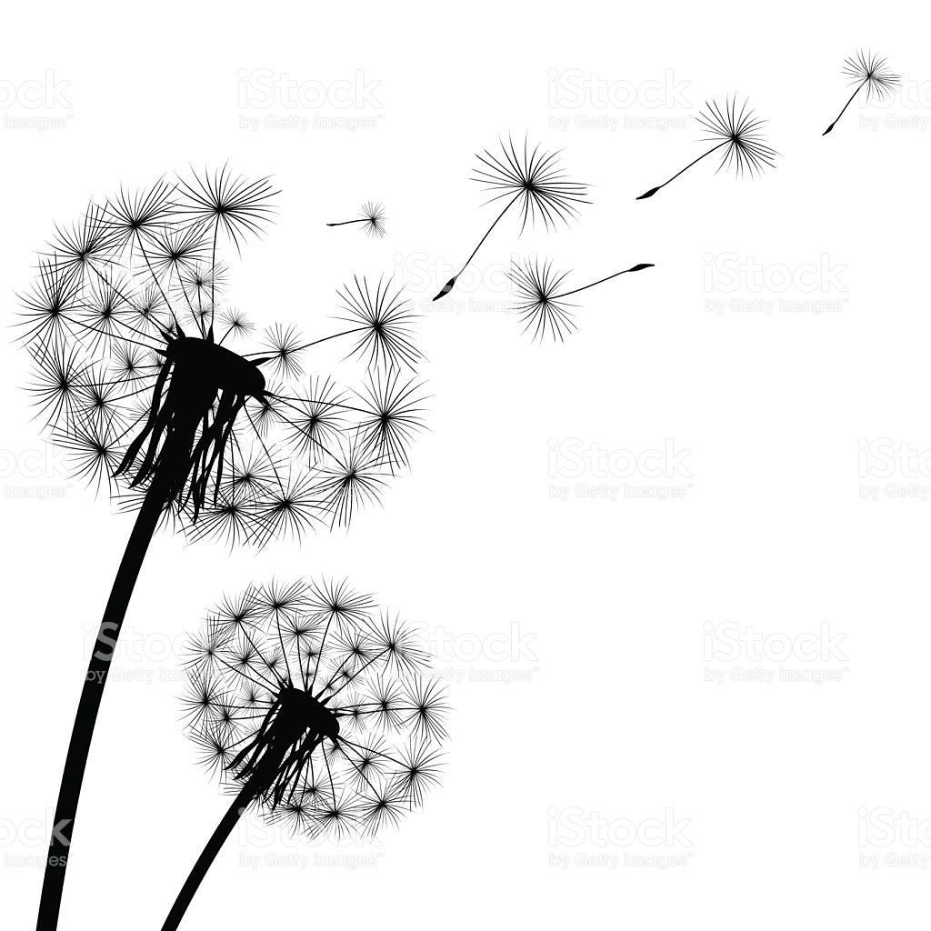 Dandelion Fluff Clipart 20 Free Cliparts