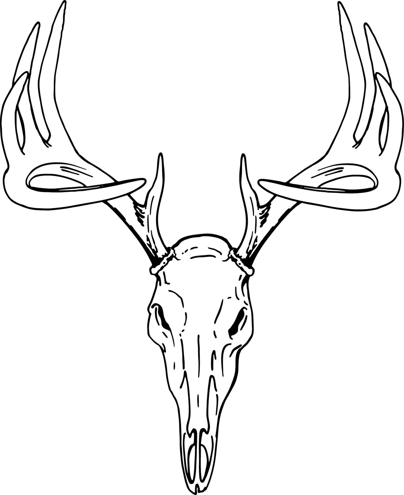 European Deer Clipart