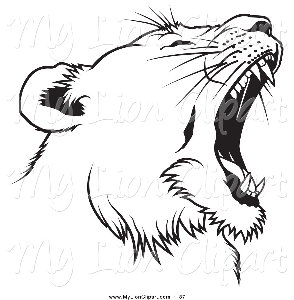 Free Lioness Head Clipart Black And White